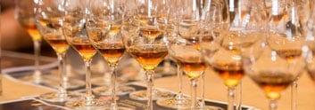 Rum Tasting Adi Matzek