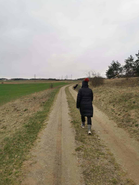 16. Tag Spaziergang Tagebuch Bild 2