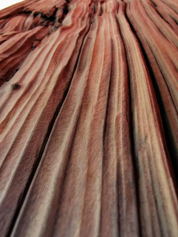 36. Tag Mein Holz Corona Tagebuch Bild 1