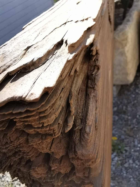 36. Tag Mein Holz Corona Tagebuch Bild 6